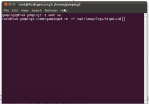 root_hapus_httpd.pid